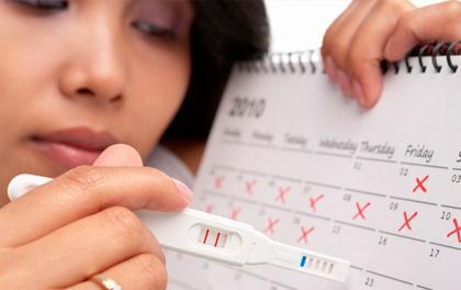 Календарь беременности